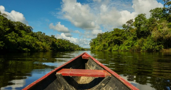 Amazon Paz Mercadal