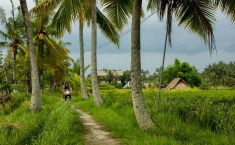 Bali Paz Mercadal