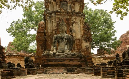 Buddah Paz Mercadal