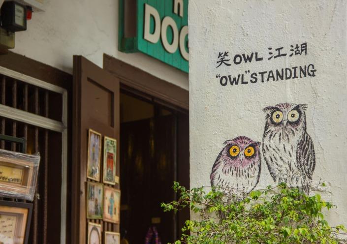 Owl Paz Mercadal