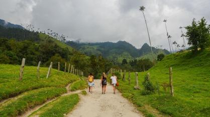 Valle del Cocora Paz Mercadal
